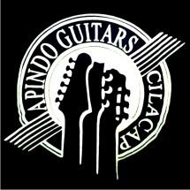 Apindo Guitars