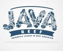 JavaReef2
