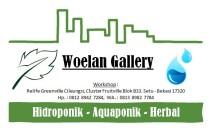 Woelan Gallery 84