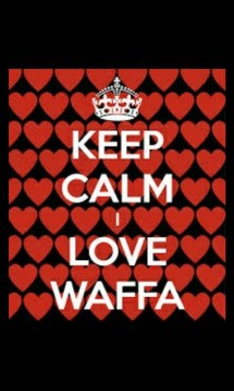 Waffa Accesories