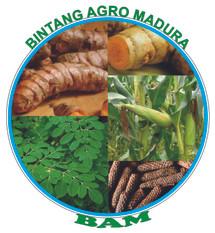 BINTANG AGRO MADURA