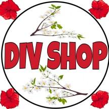 DIV Shop