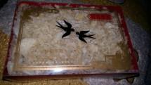 Xiao Bird Nest
