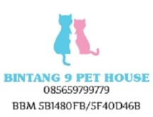 bintang9cathouse