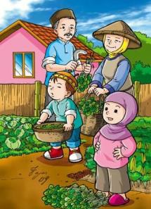 inara-farm