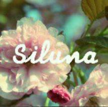 SILUNA GALLERY