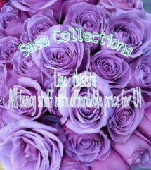 Sasa Collections