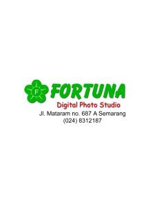 FORTUNA_TWINS