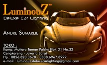 LuminouZ Car Lighting