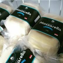 Wheel Cheese Mozarella