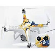 DroneInd