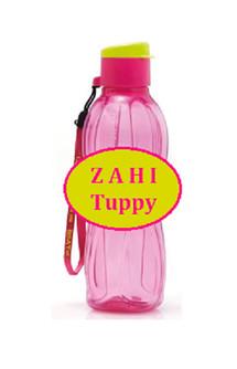 Zahi Tuppy