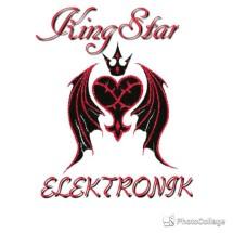 King Star Elektronik