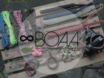 boaa_id