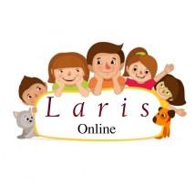 Laris Online