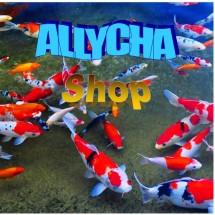 Allycha Shop