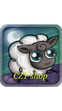 CZT shop