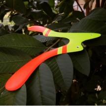 Palembang Bumerang Club
