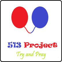 513 Project