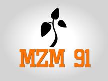MZM 91