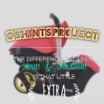 shintsproject