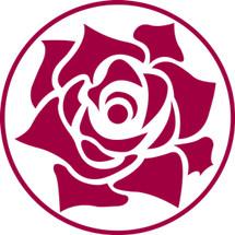 Rose Korean Beauty