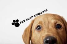 Pet Shop Surabaya