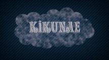 Kikunae Shop