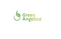 Green Angelica 21