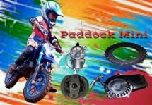 PADDOCK MINI 035