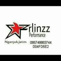 erlinzz-shop