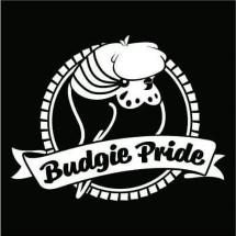 Budgie Pride