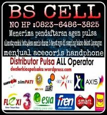 rezki bs cell 31