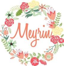 Meyrinshop