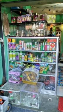 Labi Mini Pet Shop