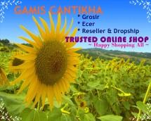 GALERIA GAMIS (CANTIKHA)