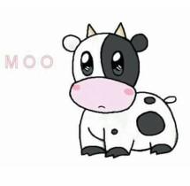 Cowsy shop