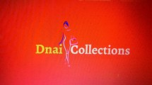 DnaiCollections