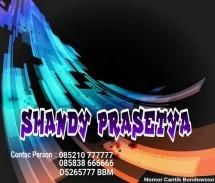 shandycard