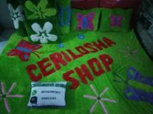 Cerilosha shop