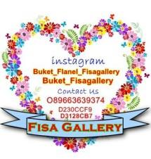 fisa gallery