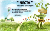 Necta Gallery