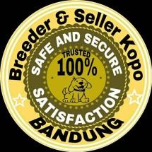 Bandung Shop Kopo