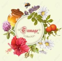 Tamago Shop Surabaya