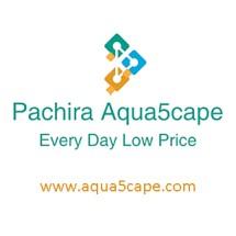 Pachira Aqua5cape
