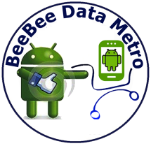 BeeBee Data Metro