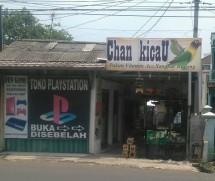 Chan kicaU
