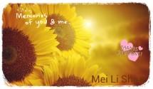 Mei Li shop