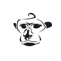 Red Monkey Case