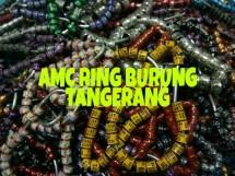 AMC RING BURUNG